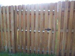 Wood Fencing 17