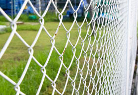 chain link fence tampa
